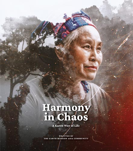 Cover of the story book called Harmony in Chaos