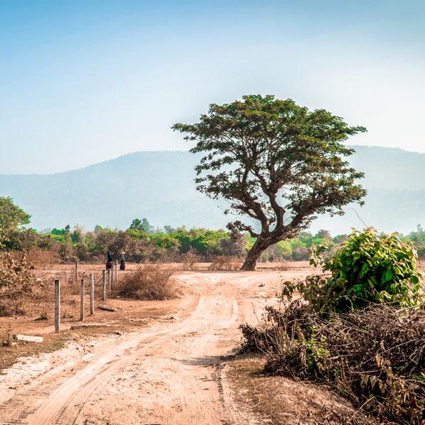 Land in Ler Doh (Kyaukkyi) bought to create the Salay hospital
